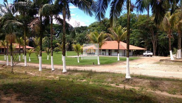Fazenda no Vale do Ribeira na cidade de Sete Barras – SP