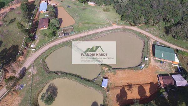 Sitio com 70 mil metros quadrados, com nascente, em Campo Alegre