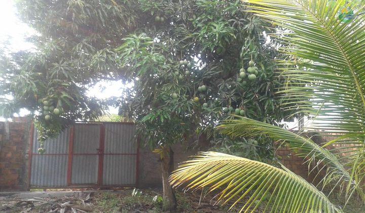 Terreno à venda Itapussuma 600 m2 próximo à Itamaracá.